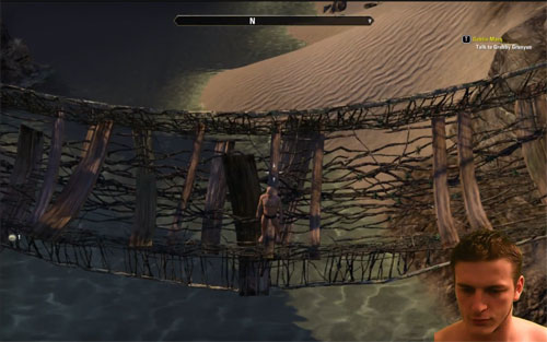 the-elder-scrolls-online-bridge-of-pain