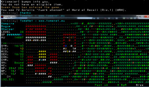 tomenet-review-online-roguelike
